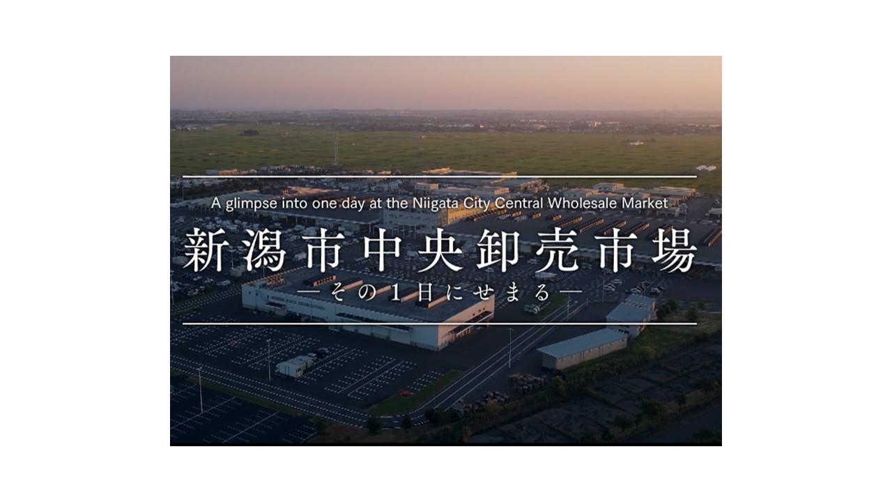 新潟市中央卸売市場様/「新潟市中央卸売市場」概要パンフレット及び動画制作